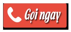 Logo gọi ngay SongNguyen Travel